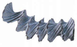 vrille-I-2004-benoit-luyckx-belgian-blue-stone